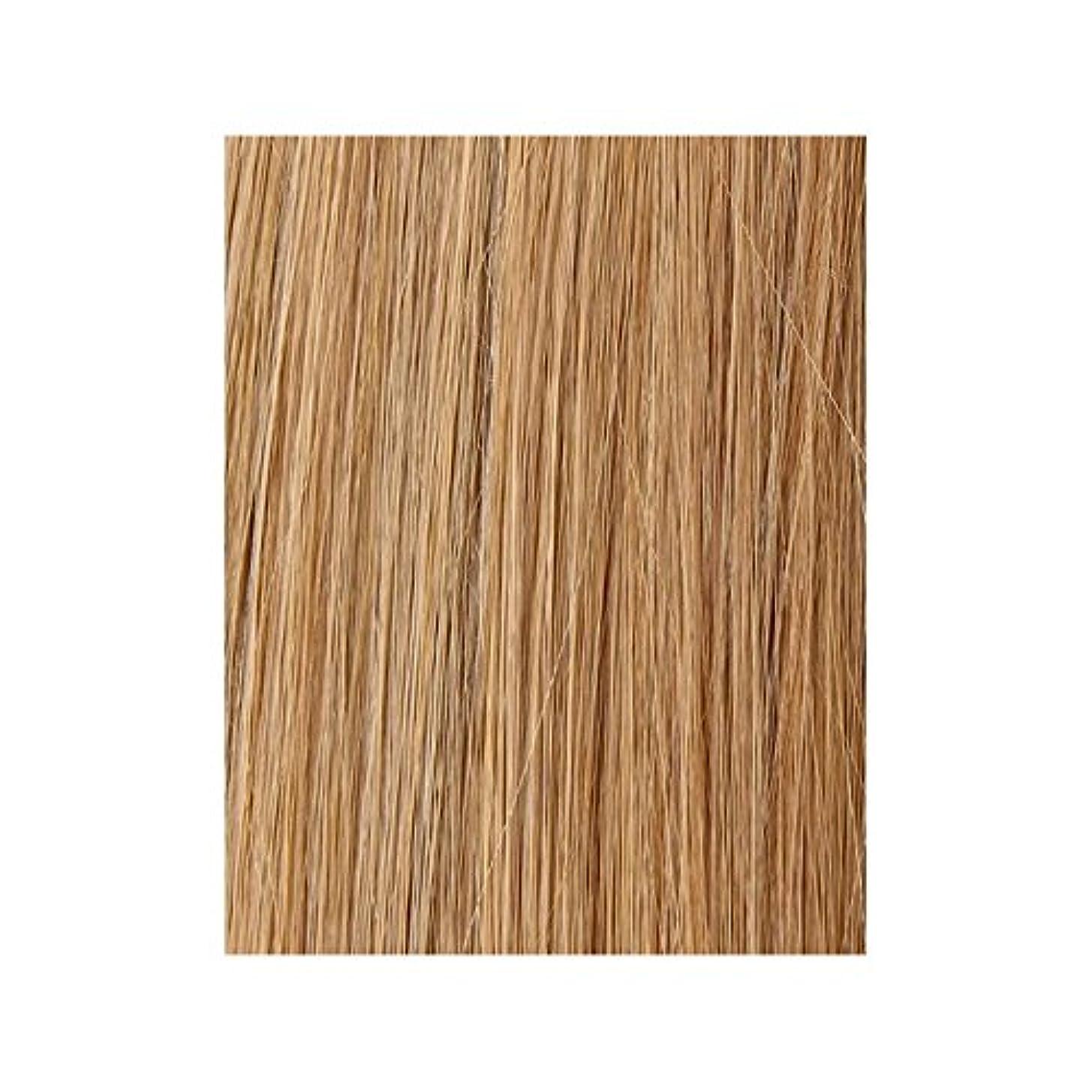 ヒゲ下に有用美しさは、100%レミー色見本ヘアエクステンションを作品 - ブロンド日焼けした10/14/16 x2 - Beauty Works 100% Remy Colour Swatch Hair Extension - Tanned Blonde 10/14/16 (Pack of 2) [並行輸入品]