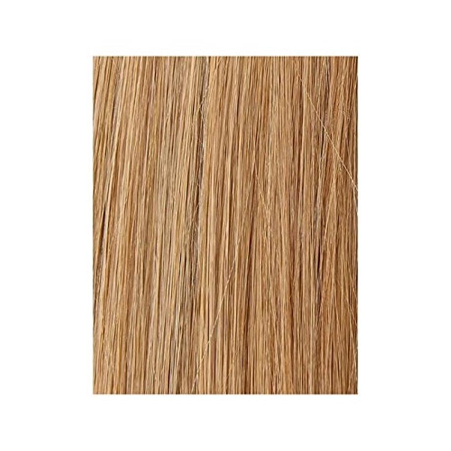 薬を飲む小麦粉見捨てる美しさは、100%レミー色見本ヘアエクステンションを作品 - ブロンド日焼けした10/14/16 x2 - Beauty Works 100% Remy Colour Swatch Hair Extension - Tanned Blonde 10/14/16 (Pack of 2) [並行輸入品]