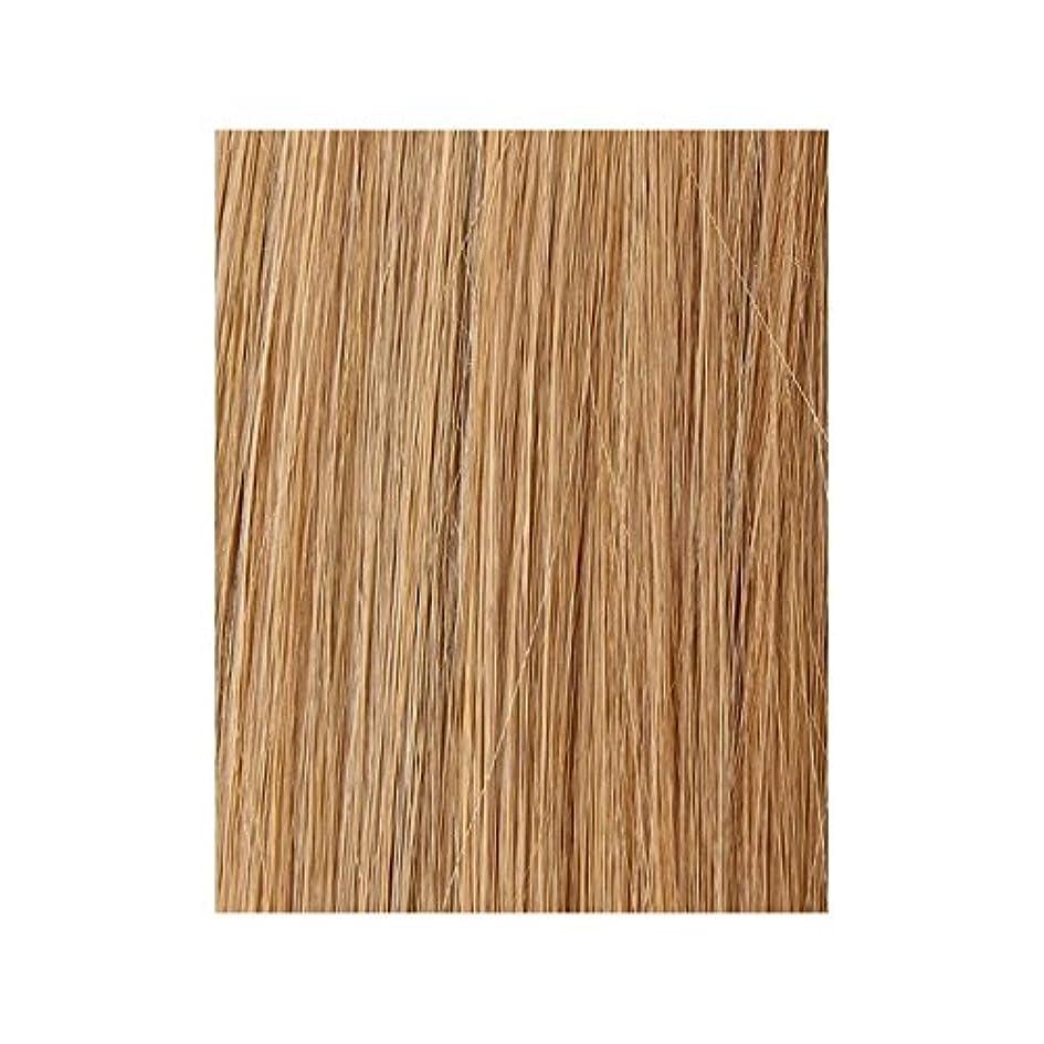 写真明らか新しさ美しさは、100%レミー色見本ヘアエクステンションを作品 - ブロンド日焼けした10/14/16 x2 - Beauty Works 100% Remy Colour Swatch Hair Extension - Tanned Blonde 10/14/16 (Pack of 2) [並行輸入品]