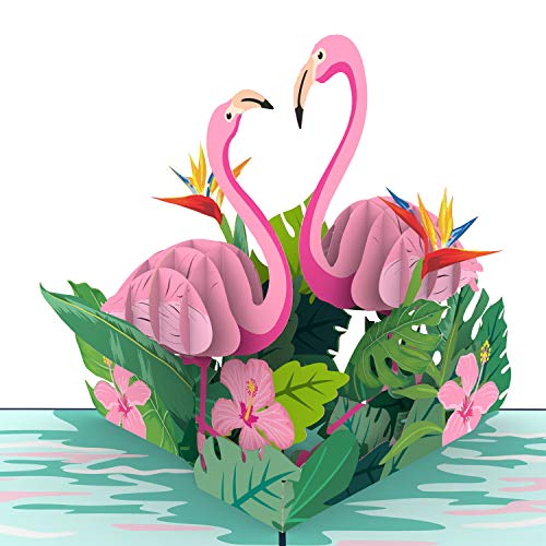 Unipop Cards Flamingo Pop Up Cards, Lovebirds pop up card, Happy Birthday Card, Mothers Day Greeting...