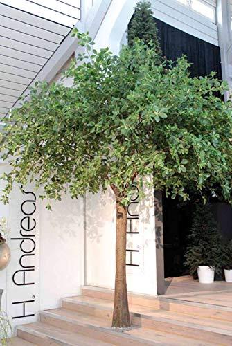 PARC Network - Schefflera Kunstbaum XXL, grün, 400cm - Kunst Strahlenaralie - Schefflera Künstlich - Künstliche Pflanze Schefflera - Kunstpflanze