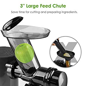 Juicer Machines for Vegetable and Fruit with Large Feed Chute, Slow Masticating Juicer with Bottle, Cold Press Juicer… |