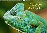 Das Leben der Reptilien (Wandkalender 2017 DIN A3 quer): Echsen, Schildköten, Schlangen aus aller...
