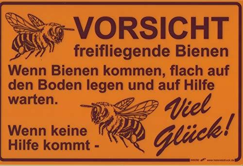 PST-Schild - VORSICHT freifliegende Bienen... Viel Glück - 309290 - Gr. ca. 30cm x 20cm - Kunststoffschild - Imker Biene Bee Honey