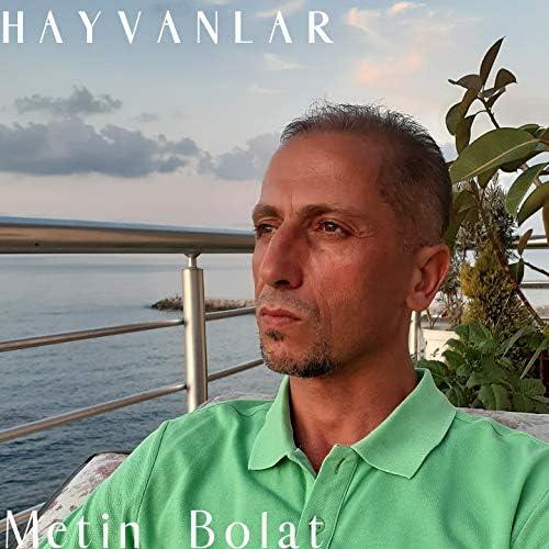 Metin Bolat
