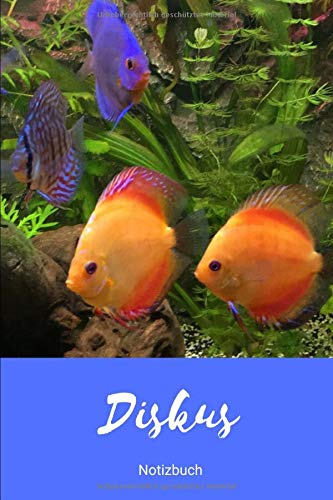 Notizbuch Diskus (01) (Aquarium, Band 2)