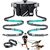 SHINE HAI Retractable Hands Free Dog Leash with Dual Bungees for 2 Dogs, Adjustable Waist Belt, Reflective Stitching Leash for Running Walking Hiking Jogging Biking
