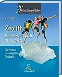 Zeolith - Lebenskraft durch das Urgestein: Prävention - Detoxhygiene - Ökologie