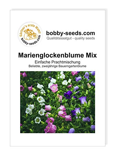 Bobby-Seeds Blumensamen 2-jährig Marienglockenblume Mischung Portion