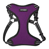 Voyager Step-In Flex Dog Harness - All Weather Mesh, Step In Adjustable Harness for Small and Medium Dogs by Best Pet Supplies - Purple, Large