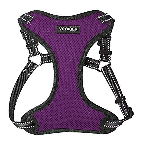 Voyager Step-In Flex Dog Harness - All Weather Mesh, Step In Adjustable Harness for Small and Medium Dogs by Best Pet Supplies - Purple, Small