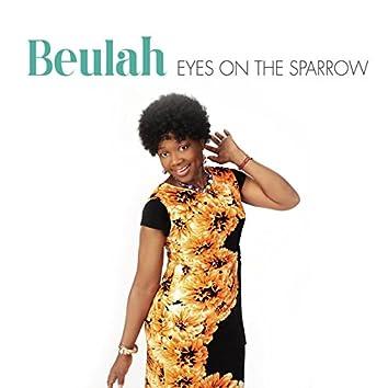 Eyes on the Sparrow