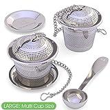 Infusore per il Tè Apace (set da 2) con Cucchiaino da Tè e Piattino Anti-goccia – Filt...