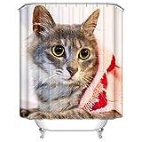 Aeici Duschvorhänge 150X180 cm Katze Polyester Badezimmer Vorhang 3D Hellbraun Duschvorhang für...