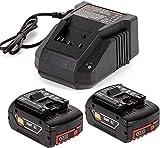 2 baterías de repuesto de litio 18 V 5,0 Ah con cargador rápido 3 A para Bos-ch 18 V BAT609 BAT609G BAT618 BAT618G BAT619 BAT619G