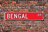 Inconnu Bengal, amateur de bengal, bengal, cadeau de bengal, amateur de chat bengal, décoration bengale, cadeau de propriétaire bengal, plaque de rue personnalisée, plaque en métal de qualité