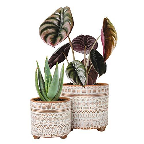 Set of 2 Plant Pots, 4 Inch & 6 Inch, Ceramic Planter Pot with Drainage Hole, Geometric Patterns Flower Pot, Terracotta/White
