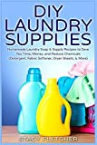 DIY Laundry Supplies: Homemade Laundry Soap & Supply Recipes to Save You Time, Money, and Reduce Chemicals (Detergent, Fabric Softener, Dryer Sheets, & More) by Stacy Fletcher (2015-03-17)
