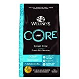 Wellness Core Natural Grain Free Dry Dog Food, Ocean Whitefish,...