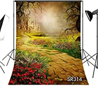 HD ドリームランド台無しにされた城の背景ハロウィーンの背景古い木石の小道子供のための花の背景写真ポートレート写真7x10ft写真撮影小道具 314