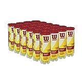 Wilson Championship Extra Duty Tennis Ball Case - 72 Balls, Yellow