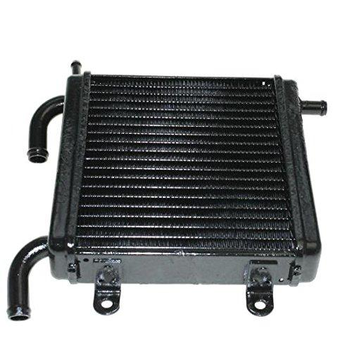 Wasser Kühler, Radiator, Yamaha YQ Aerox/Cat 50, MBK Nitro/Cat/Naked 50, 195x20x35