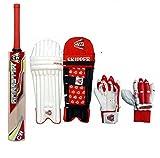 CW Trainer - Mini Juego de críquet de bateo con Guantes de Bate Derecho, Protectores de piernas para 12-13 años