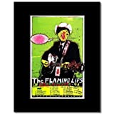 Music Ad World Mini-Poster, Motiv: Lollapalooza 1994