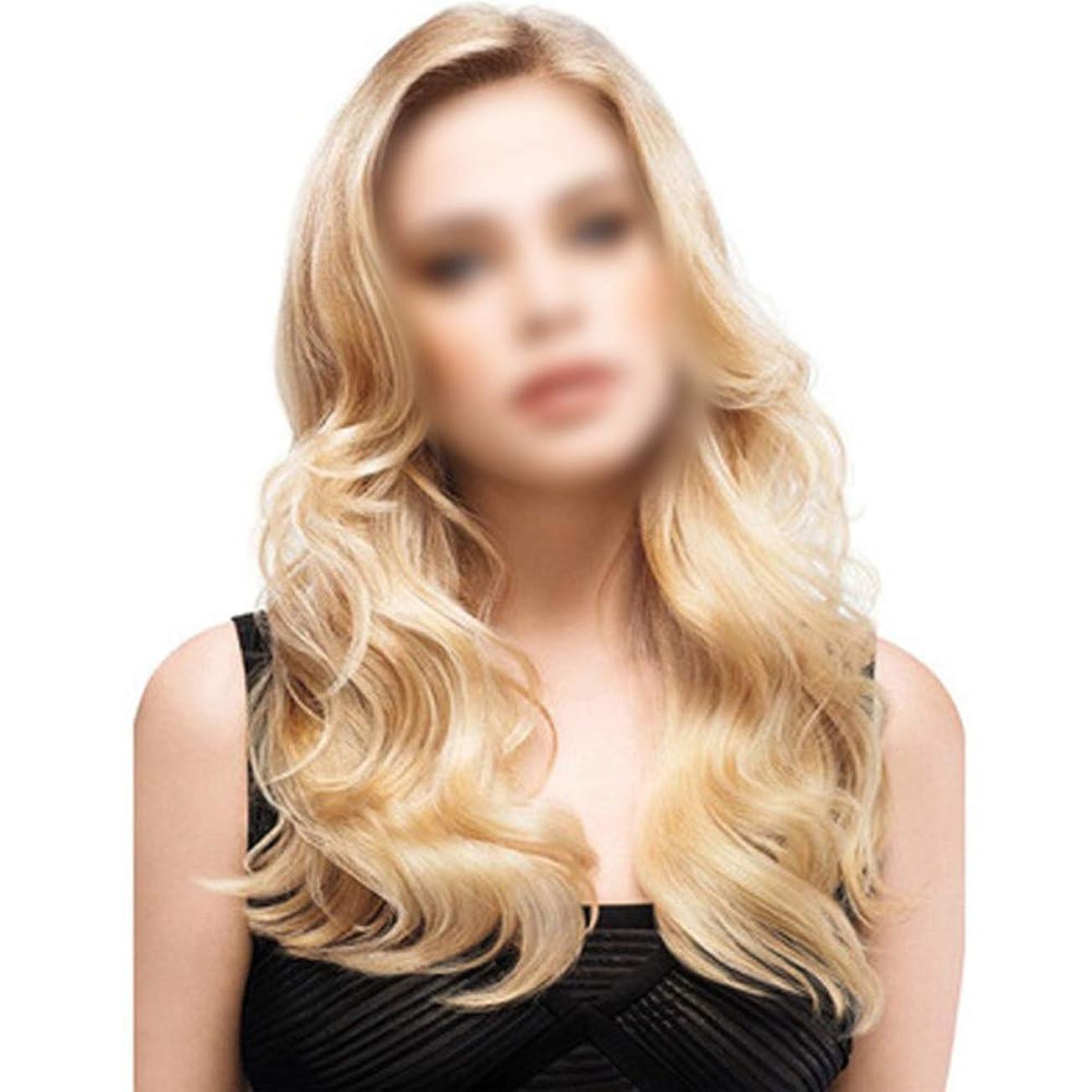 家禽バイナリ追放HOHYLLYA 女性の日常の服のための長い巻き毛の波状のブロンドの髪かつら耐熱ファイバー+かつらキャップパーティーウィッグ (色 : Blonde, サイズ : 65cm)