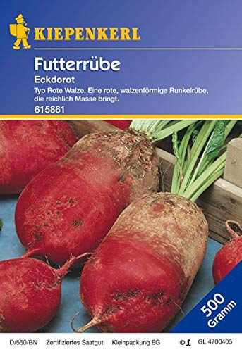 Futterrüben: Eckdorot, 500 g, Beta vulgaris - 1 Foliensack/ 500 g
