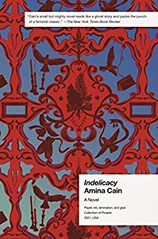 Indelicacy: A Novel by [Amina Cain]