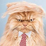 FMJI Trump Style Cat Wig Halloween Costumes - Pet Cosplay Hat and Hair Accessories Donald Cat with Collar & Tie Head Neck Wear Apparel, Toys for Christmas, Parties, Festivals (Neck Circum 15 Inches)