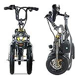 Bicicleta Eléctrica Plegables, 250W/350W Motor Bicicleta Plegable 35km/h, Bici Electricas Adulto con Ruedas de 14', Batería 36V/48V 10Ah, Asiento Ajustable, con La Batería de Litio Extraíble - Gris