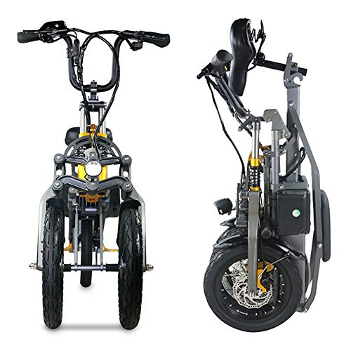 GUOE-YKGM Folding Electric Bike Beach Snow Bicycle 14inch Tire Ebike 250W/350W 36V/48V 10AH Electric Mountain Bicycle with Removable Lithium Battery - Gray Speeds Up to 35Km/h