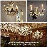 BIGHOUSE E14 LED Lampe, Kerzenform, 4W Ersetzt 35W Halogenlampen, 400 Lumen, 2700K Warmweiß, Filament Klar, 6 Stück - 7