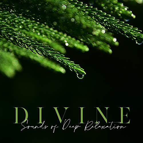 Divine Sounds of Deep Relaxation – Collection of New Age Music 2020, Extreme Relaxation, Inner Balance, Calm Down, Serene Spirit