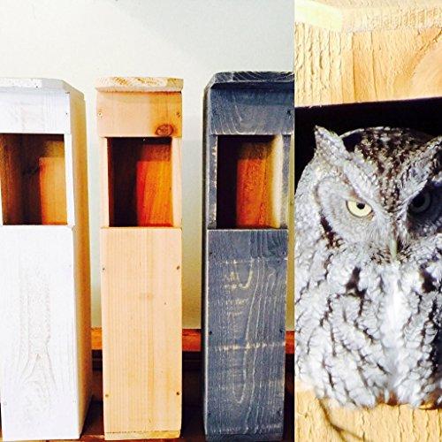 Screech Owl House | Owl Box Made in USA