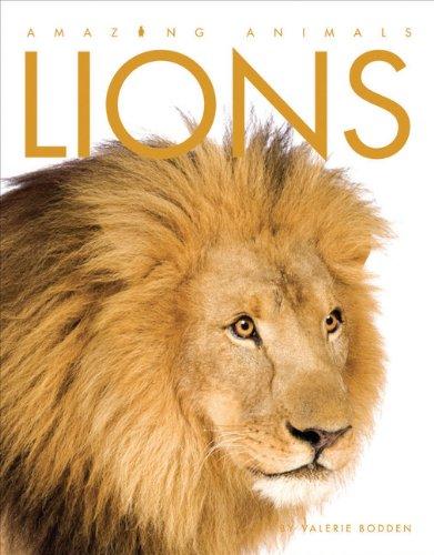 Amazing Animals: Lions