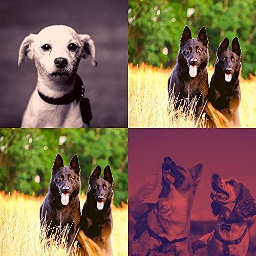 Музыка для собак Плейлисты