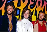 Poster The Bee Gees, 61 x 91 cm