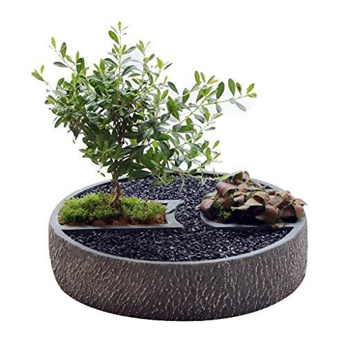 Qp-hp Pot de Fleur Succulent de Gros Calibre Pot de céramique Simple et charnu Plateau de Combinaisons innovantes en grès Extra-Large (Couleur : 3)