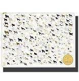 Razas de Perros Classic Animal Chart Art Painting Poster Print Decoración Room Wall Picture 42 * 60 Cm sin Marco