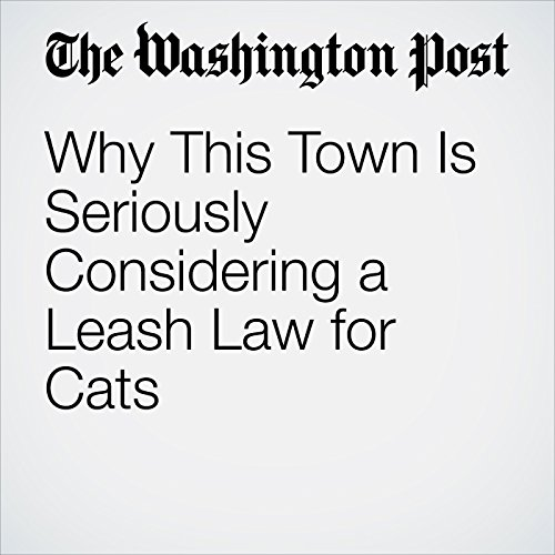 Why This Town Is Seriously Considering a Leash Law for Cats audiobook cover art