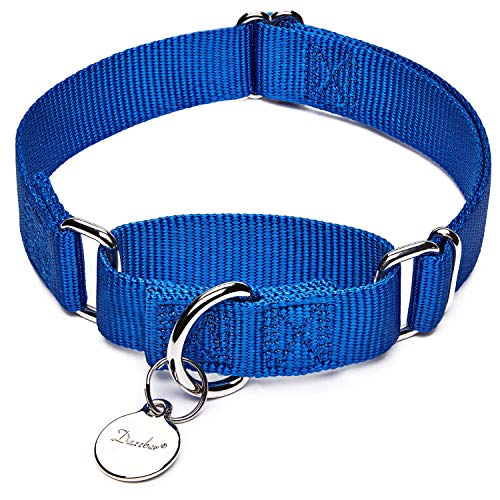 Dazzber Martingale Collar, Small, Royal Blue, Neck 10 Inch -15 inch, No Pull No Escape Dog Collar, Great for Training Walking Running