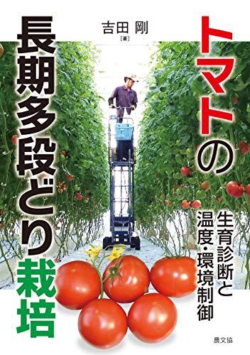 トマトの長期多段どり栽培