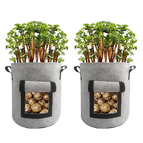 Mintice 2 Stück Pflanzen Tasche Pflanzenwuchsbeutel Pflanzsack Stoff visualisiertes Seitenfenster Pflanzgefäßbehälter Töpfe Zuhause Garten für Kartoffel, Tomate, Karotte 10 Gallonen Grau