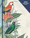 Tropical Kraze Planner: 2021 Parrot Planner Weekly & Monthly Calendar Organizer With Rainforest Birds