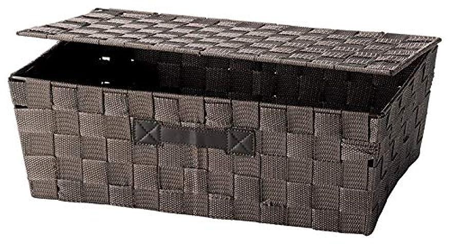 ちどり産業 収納ボックス ブラウン 38X26XH13.5cm PPストラップバスケット SF-900DBR