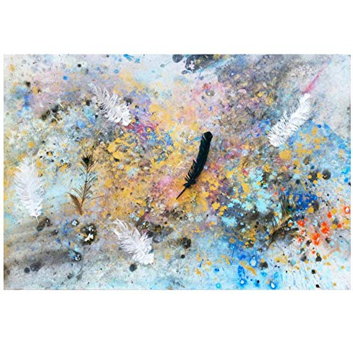 Rjunjie Canvas Picture Abstract Feather Nodic Style Colorful Art Canvas painting Pictures decoration Wall Art for Living room(60x90 cm no frame)