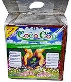FibreDust Coco Coir Block (1 PK)